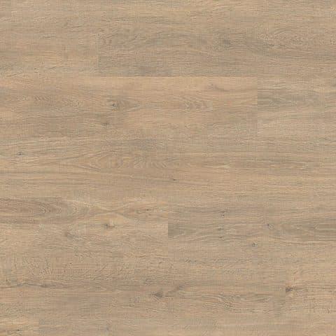 Roble Barista LC 150 Premium 6420
